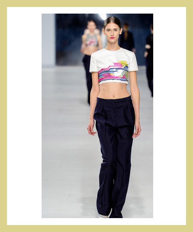 Resort Fashion 2014-Crop-tops-Dior