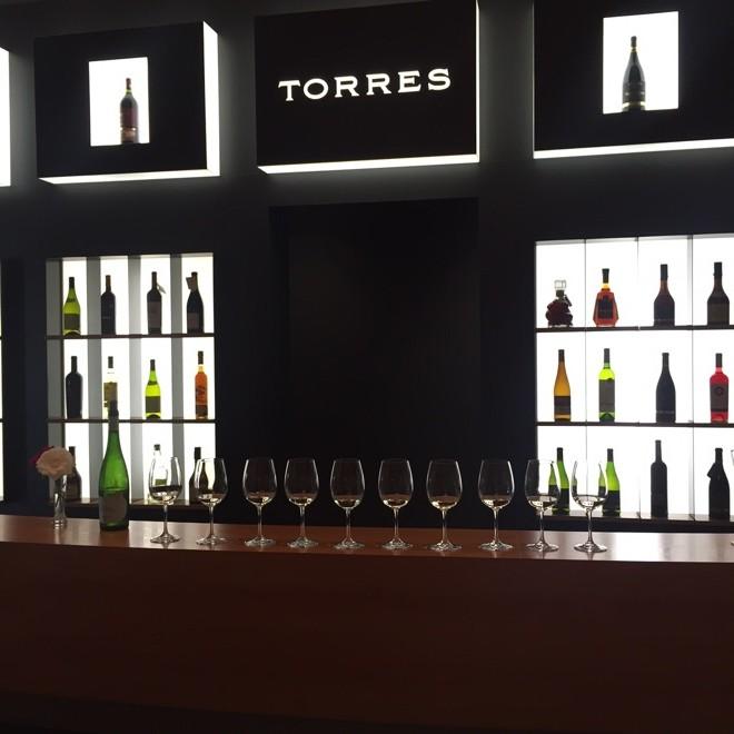 bodegas torres vinos