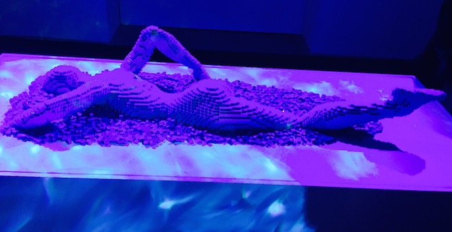 The Art of the brick 7