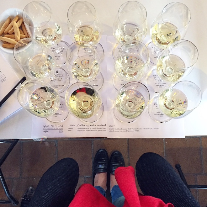 vino blanco cata magnificat 2016