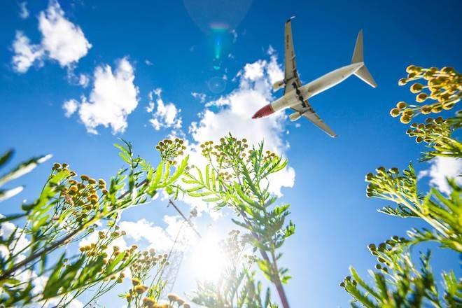Norwegian Reward vuelos gratis