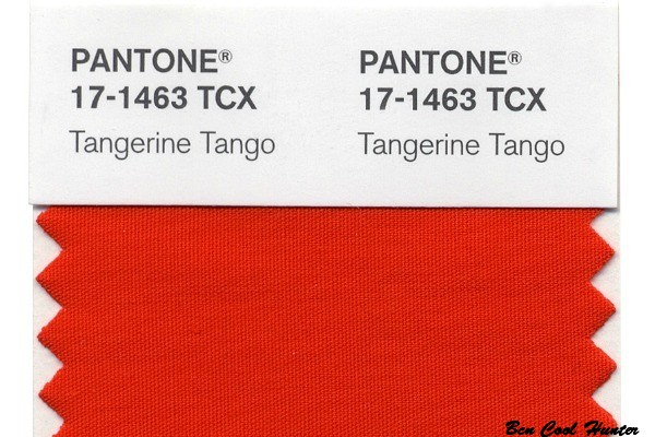 tangerine-tango pantone