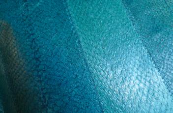 textura_piel_salmon