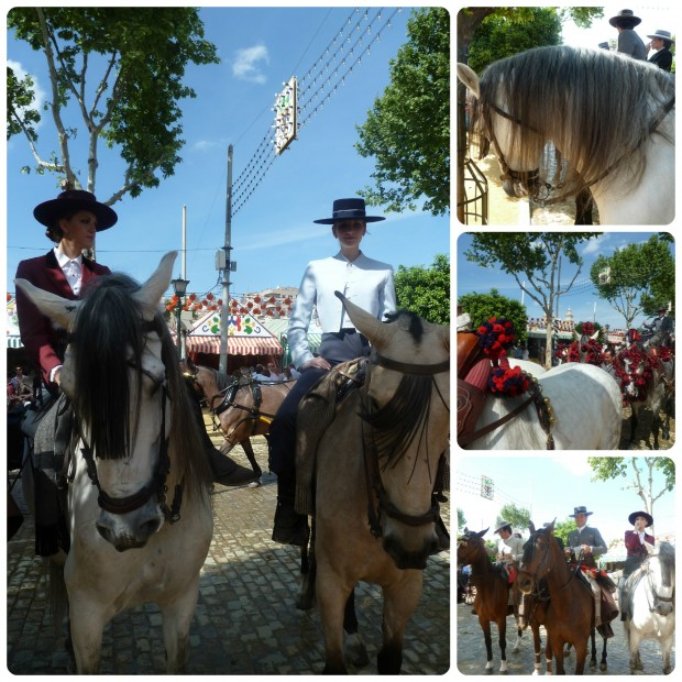 caballos amazonas