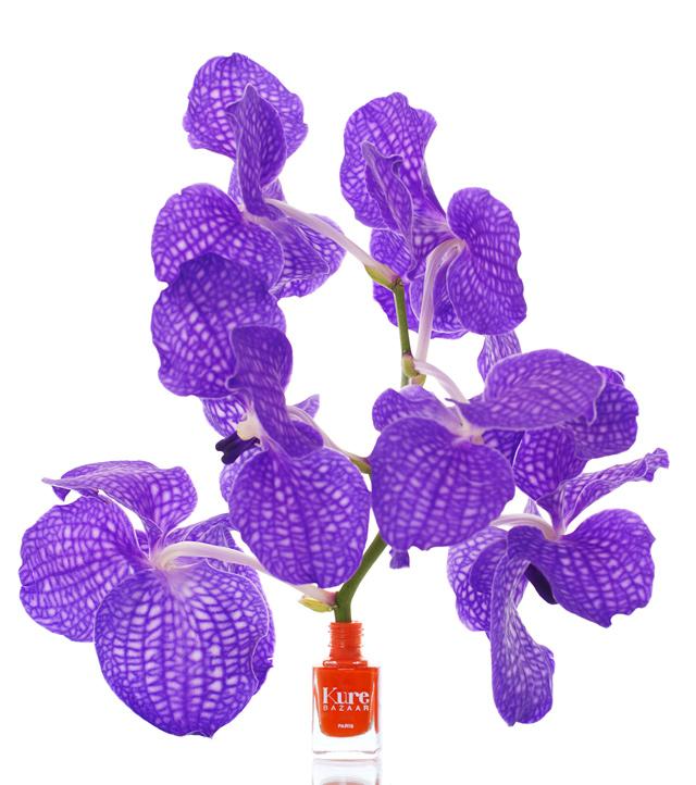 Kure-Bazaar-Afrika-Flower