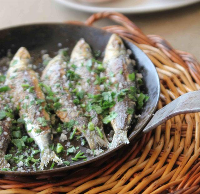 Las sardinas del Tragamar