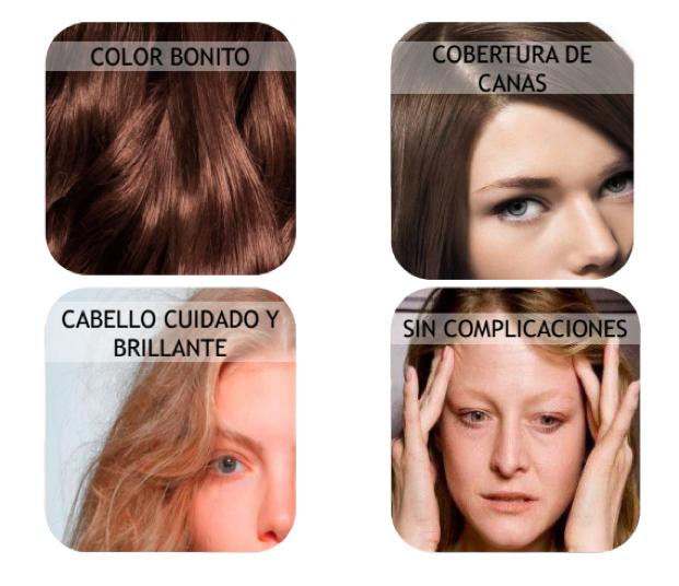nutrisse tinte cabello