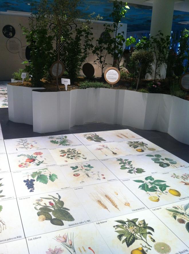 pabellon italia piante