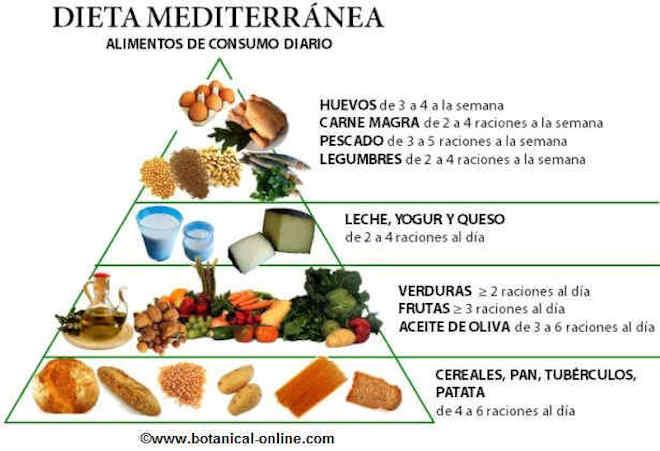 dieta mediterranea piramide alimentos