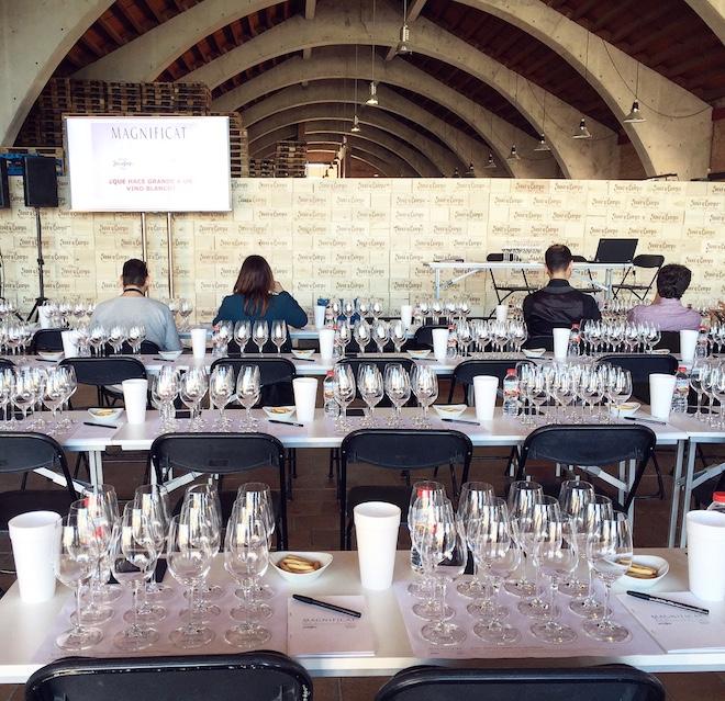 magnificat vino blanco cata