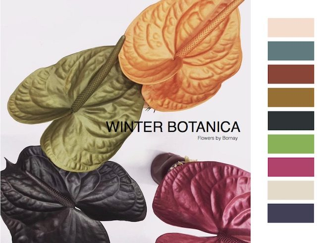 Colores de moda para el otoño invierno 2018-19, las tendencias ...