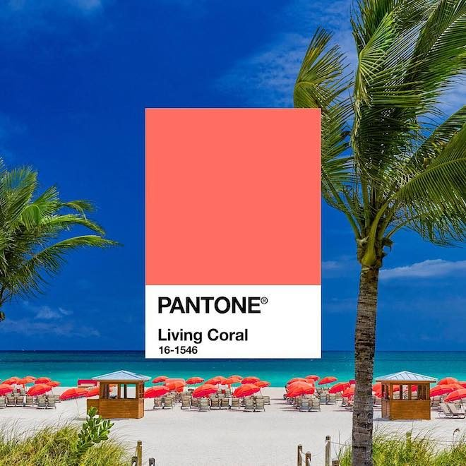 pantone living coral color 2019