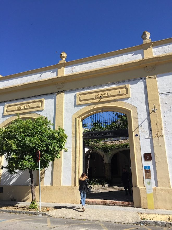 visita bodega Los Arcos de Jerez