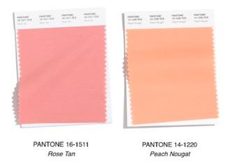 pantone fw 2020 21 rose tan peach