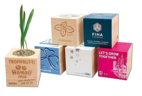 regalos para empresa cubo planta
